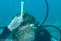 BD-101213-Playa-del-Carmen-3168-Homo-sapiens.-Linnaeus.-1758-[Diver].jpg